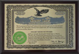 Smart Mesh Network Patent
